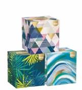 Kleenex Box Collection (56 ud)