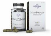 Hifas da Terra Mico Polypor Extracto de Polyporus (70 cápsulas)