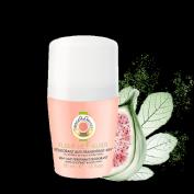 desodorante 50 ml fleur de figuer.