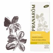 Pranarôm Aceite Vegetal BIO Calófilo (50 ml)