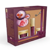Atashi cofre terapia antioxidante longetive