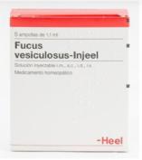 Fucus Vesiculosus-Injeel Heel
