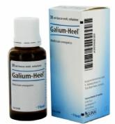 Galium-Heel S Gotas (30 ml)